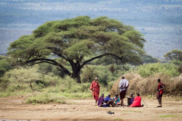 Masais en Amboseli